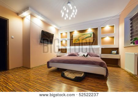 Modern master bedroom interior with dog lying on bed