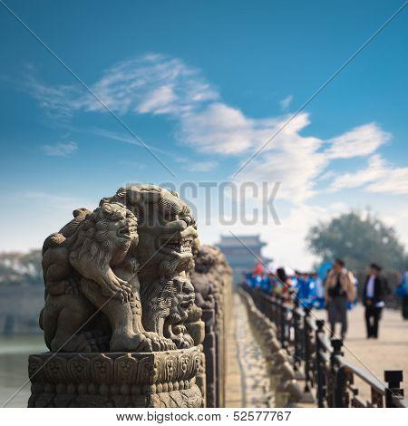 Stone Lion Closeup In Beijing