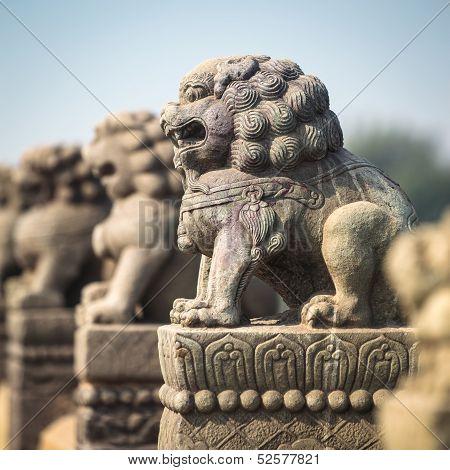 Ancient Stone Lion Closeup