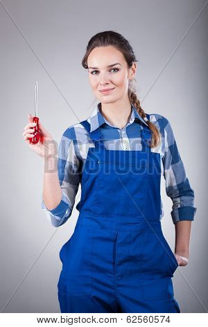 Woman With A Screwdriver