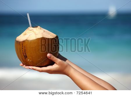 Woman`s Hands Holding Coconut