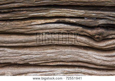 Old Wood Log Texture