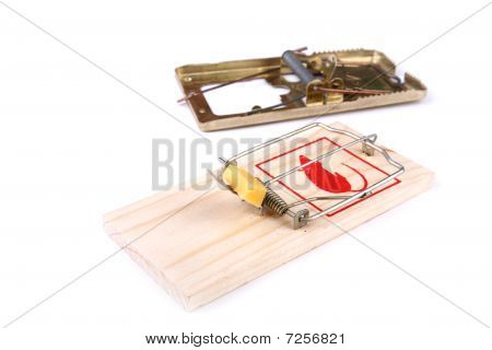 Mousetrap With Cheese And Empty