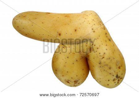 Bizarre Potato