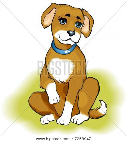 Vector drawing. Playful puppy beige color on the green grass poster