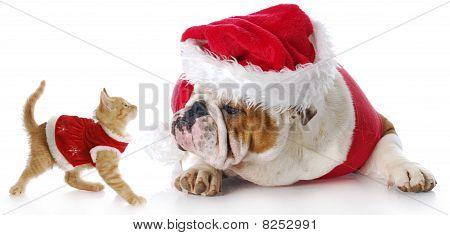 Kerstmis katten- en hondenbont