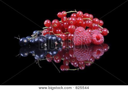 mixed berries and currants