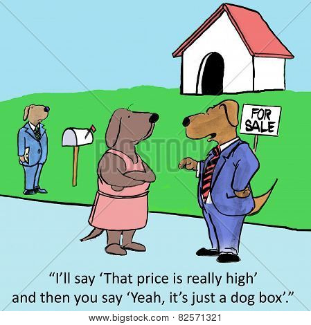 Dog Box Real Estate