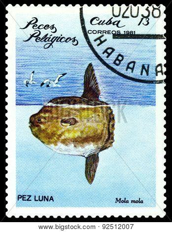 Vintage  Postage Stamp. Mola Mola.