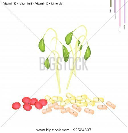 Healthcare Concept Illustration of Beans Sprouts with Vitamin K Vitamin B Vitamin C and Minerals Tablet Essential Nutrient for Life.. poster