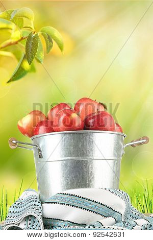 Pail filled with red apples and dishcloth on nature background