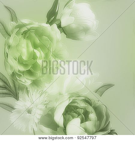 art monochrome vintage watercolor blurred floral pattern with green and white peonies and gerbera isolated on light green background with space for text