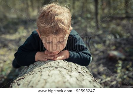 Little boy child lying on a chopped tree exploring the nature