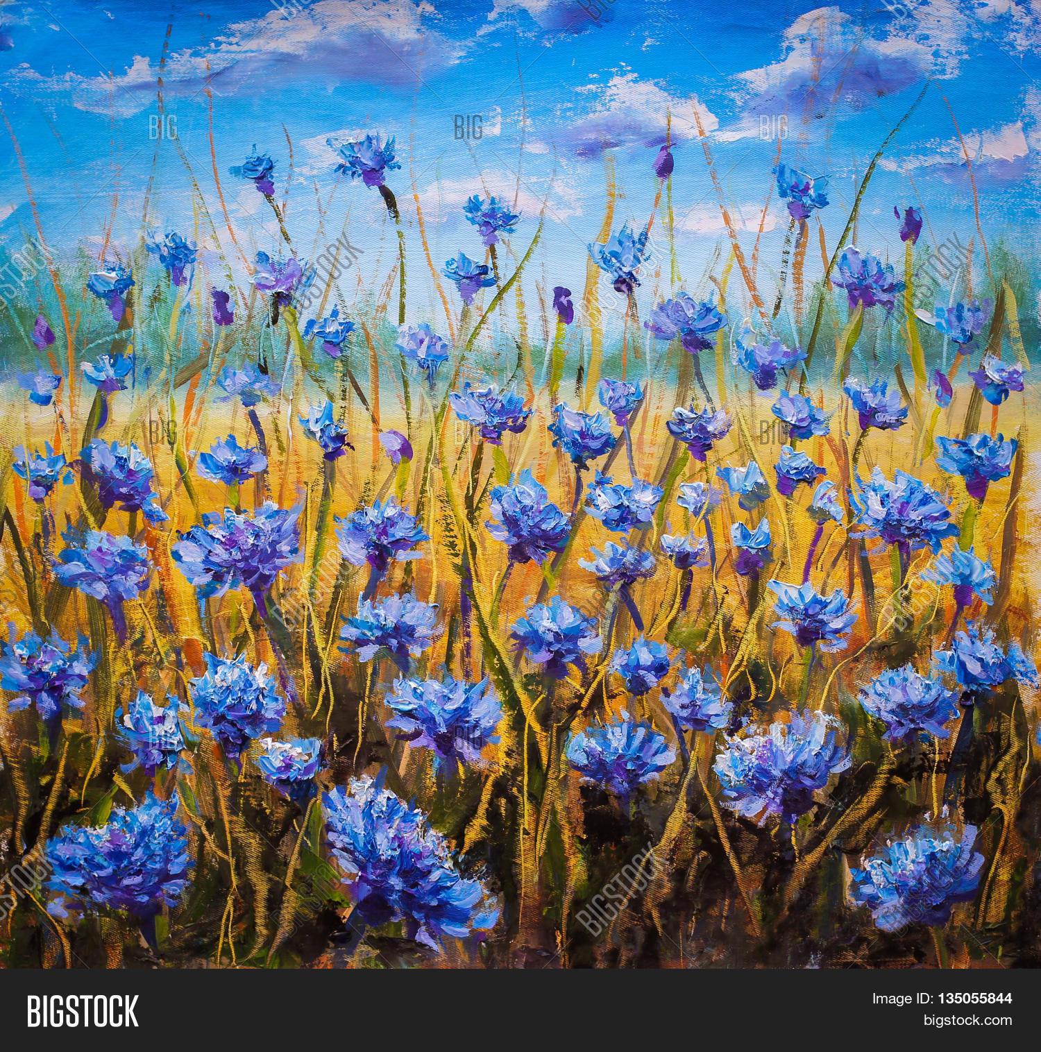 flowers field palette image photo free trial bigstock