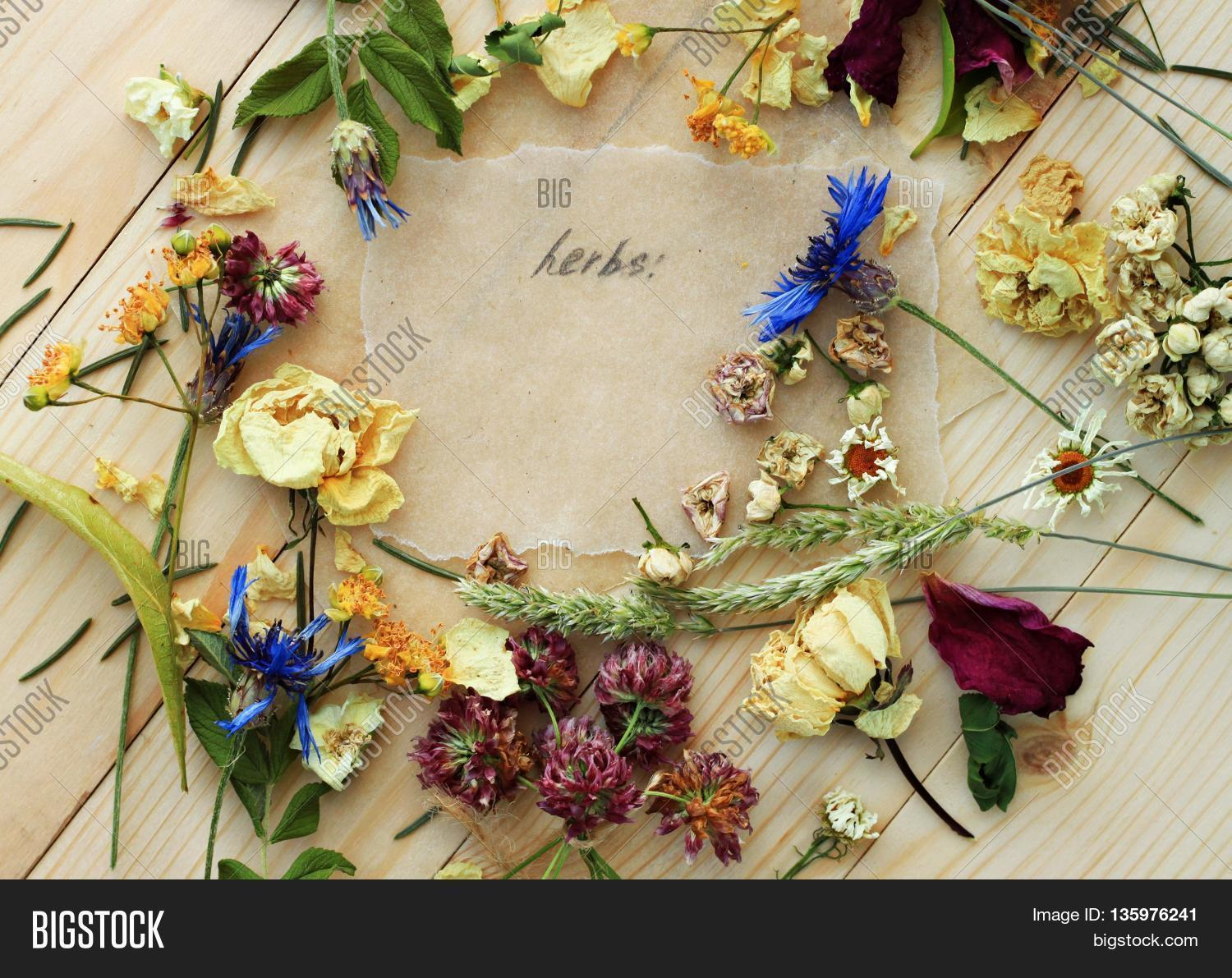 Dried Herbs Blend Image Photo Free Trial Bigstock