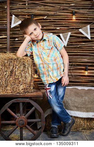 Handsome Boy Is Standing Near Ancient Cart With Hay Rick