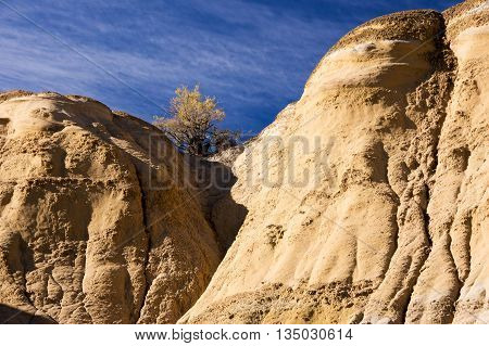 Ah-shi-sle-pah Wilderness Study Area, New Mexico, Usa