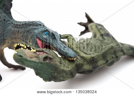spinosaurus biting tyrannosaurus on a white background