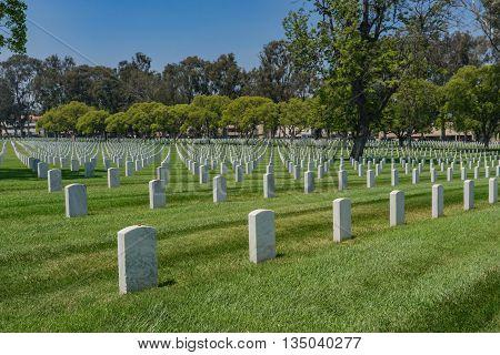 Military Grave Headstones
