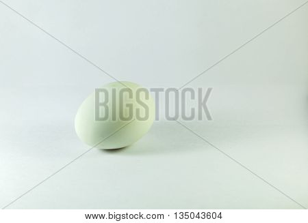 an oval or round object laid by a female bird, reptile, fish, or invertebrate, usually containing a developing embryo. The eggs of birds are enclosed in a chalky shell, while those of reptiles are in a leathery membrane.