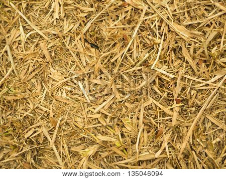 Patterns  Hay texture outdoor field nature background
