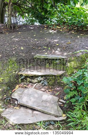 Old stone staircase with the moss near the river.