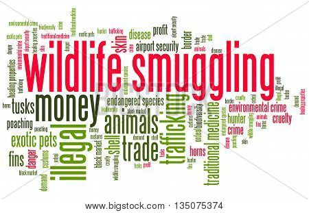 Wildlife Smuggling