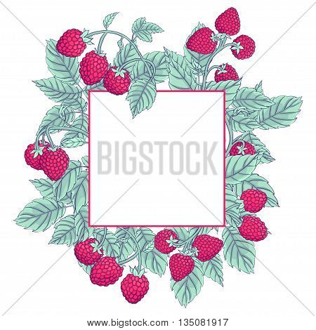 Frame made of raspberries on the branches on a white background. Raspberry dark line drawn and painted pastel muted colors. Vector illustration