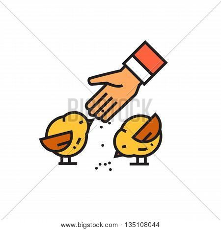 Birds feeding vector icon. Colored line illustration of human hand feeding birds with grain