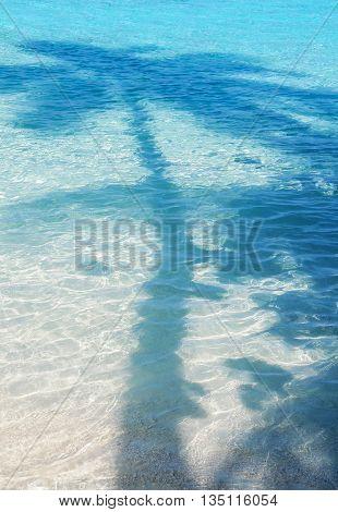 Palm shadow on blue shallow maldivian water.