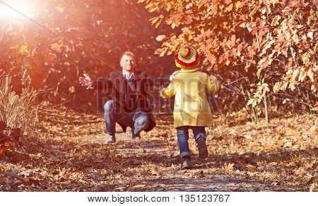 Funny Baby Girl Running towards Open Arms of Her Father along Alley in Autumnal Forest with Shine Shining Throw Golden Leaves