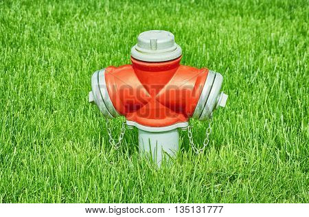 Red Fire Hydrant in the Green Grass