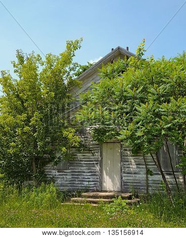 weather one room schoolhouse in green tree foliage