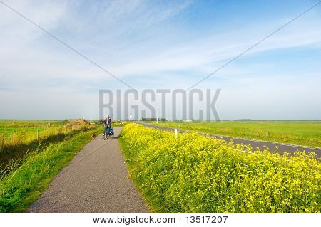Man with his dog at the bike in Dutch landscape poster