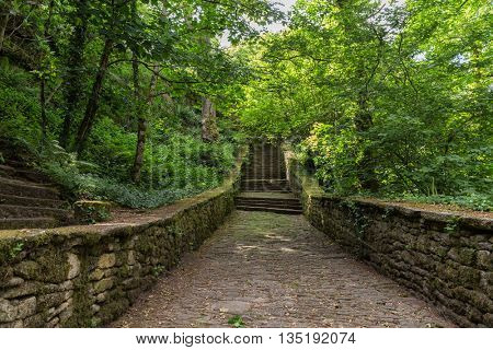 Old stone stairs leading to green temperate forest in Brittany, France
