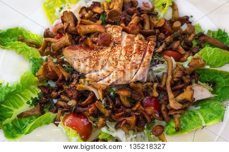 Chanterelle salad chicken breast on white plate