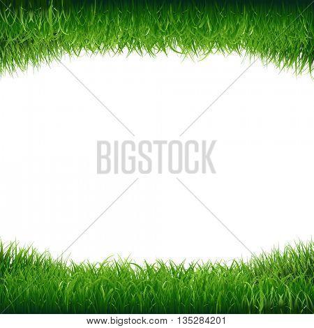 Green Grass Frame, Green Grass Frame, Vector Illustration