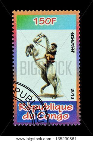 CONGO - CIRCA 2010 : Cancelled postage stamp printed by Congo, that shows Andalucian.