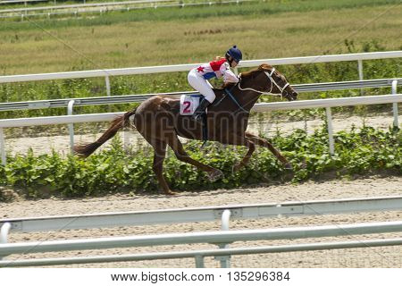 Horse race for the prize Big summer in Pyatigorsk,Caucasus,Russia.