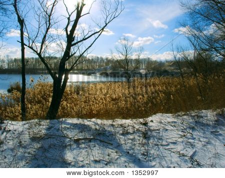 View At The Winter River Shore Against Sun