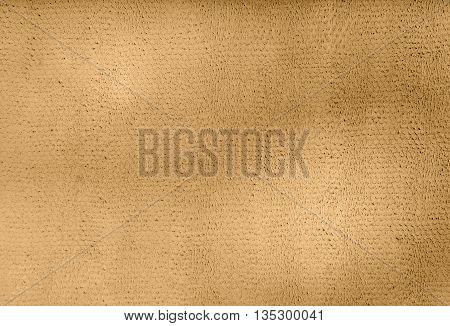 Background with Patterned Texture Made of Plaster Constraction Technique