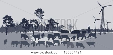 illustration with wind power generators and cow silhouettes in country landscape