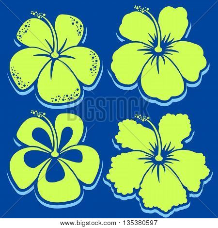 Vector Flower . Hibiscus Collection. Vector illustration