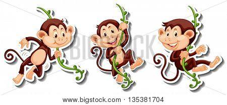 Stickers of monkeys hanging on vine illustration