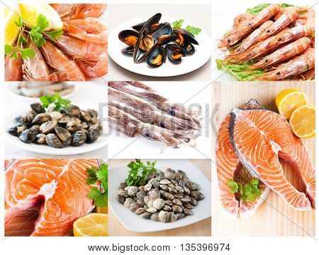 Collage of photos from the fishery products