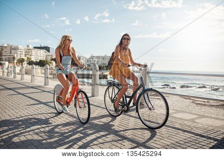 Happy Female Friends Riding Bicycles On The Seaside Road