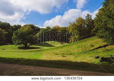 Green meadow hills oak trees and cloudy sky landscape in Jaegersborg. Forest park near Klampenborg Copenhagen. poster