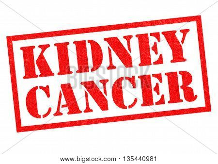 KIDNEY CANCER red Rubber Stamp over a white background.