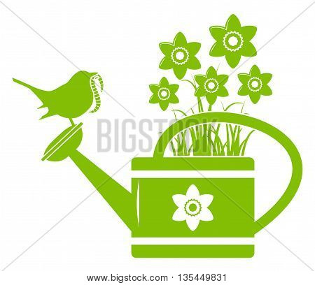 vector daffodils in watering can and bird with worm isolated on white background