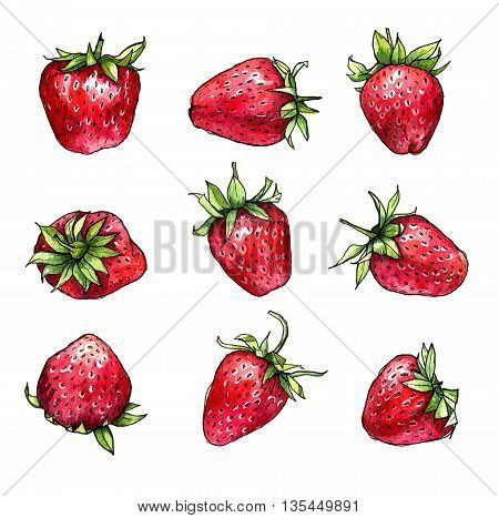 Set of strawberries isolated on white background. Hand drawn watercolor illustration.